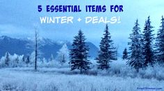 5 Essential Items fo