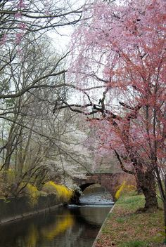 Branchbrrok Park - New Jersey USA Amazing discounts - up to 80% off Compare prices on 100's of Travel booking sites at once