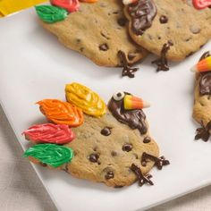 chocolate chips, chocolates, famili, cookie dough, turkey cooki