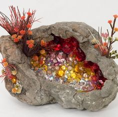 """Kia Neill.  """"small cavity of rock is embellished with a splendor of crystals and flora"""""""