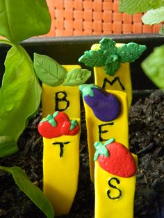 handmade Garden Plant markers