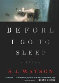 Before I Go To Sleep : A Novel by S. J. (Steven J.) Watson.    We had a patron at the desk who wanted a page turner like Gone Girl. This heart-thumper will keep the pages flying!  (AKS)