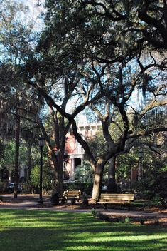 Savannah, Georgia has been named no.7 on Travel + Leisure's list of the World's Best Cities!