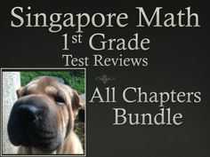 Math in Focus  Singapore Math 1st Grade Test Review Bundle.  This bundle includes a test review for all 19 chapters of the Singapore Math program for the 1st Grade.     The problems on each test review are very similar to the ones on the tests, just the numbers and wording have changed. For each problem on the test, there are two or three practice problems.   They can also be used as assessments. Ryan Nygren