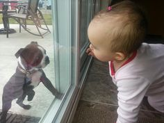 Baby and Puppy Meeting Through Patio Doors