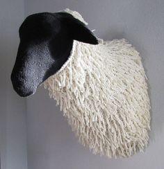 Wooly Sheep!