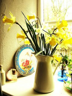 Kitchen Window Daffodills by mary_loves_2_sew on Flickr