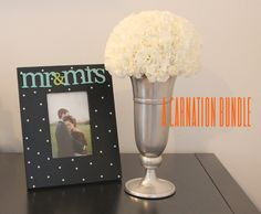 carnation bundle. | Craft Box DIY To Go!