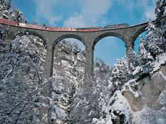 Bernina Express between Switzerland and Italy.  From the Alps down to northern Italy, beautiful train ride!!!