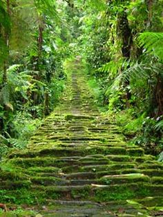 The entrance to the Lost City of Teyuna in the mountains of Colombia