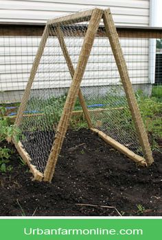 Garden trellis ideas for a vegetable garden