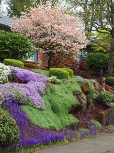 Landscape that has good form (tree, house, boulders, steps) but softens hard items with all the ground cover.  The green also heightens the design without being too busy.