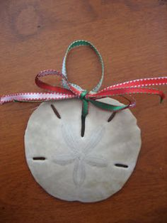 Sea Shell Ornaments DIY great memories Christmas