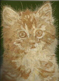 Is this your CAT ?  Cat Lovers Collectible Handmade leaf art by museumshop, $99.00.  CAN YOU BELIEVE it is made out of HAY or rice straw?  No color, paint or dye added to the natural color of rice leaves !  COLLECTIBLE LEAF ART