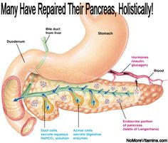 MANY HAVE REPAIRED THEIR PANCREAS HOLISTICALLY! Your Turn! https://thehealthFoodGuru.com/products