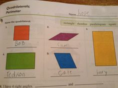 Name the Quadrilaterals