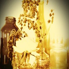 Repurpose wine and alcohol bottles for dried lavender, mixed with vintage bottles, very cheap way to decorate!