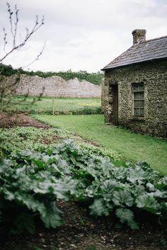 Garden at Ballyvolane by Beth Kirby | {local milk}, via Flickr