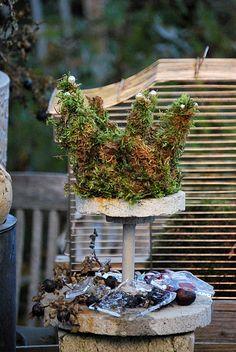 moss crown.  love ~