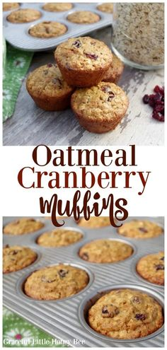 Oatmeal Cranberry Muffins - Graceful Little Honey Bee