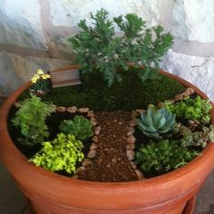 My first attempt at a miniature garden. This was so much fun to make. There will be many more in the future!!!!