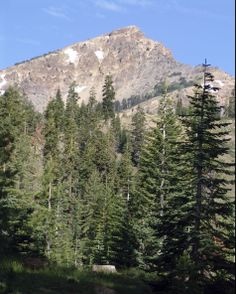"""New Adventurous Board Game """"King of the Mountain"""" - Race Your Family to the Top of a Mountain! (Watch out for animals!) #Hiking #Outdoors #Game"""