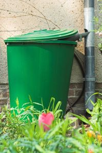 How a Rain Barrel from a Trash Can