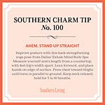 Southern Charm Tip No 100