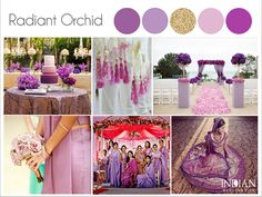 Radiant Orchid Indian Wedding Palette