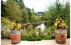 Napa Wedding Venues: Hans Fahden Vineyards in Calistoga on I Do Venues shot by Danielle Gillett Photography