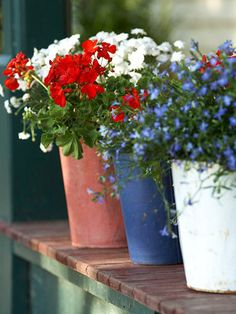 How simple!  Red, White and Blue flowers in separate pots are perfect for a center piece or at the edge of your patio or deck!  When the holiday is over, plant them in your garden!  Happy Memorial Day!