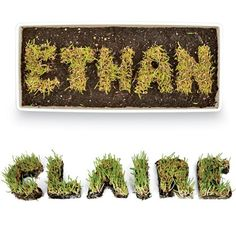 Let your child grow his/her own name in grass using letter cookie cutters. Keep the grass watered in a sunny spot, and it will last for weeks. The bonus? Your child can practice his scissor skills trimming the grass.