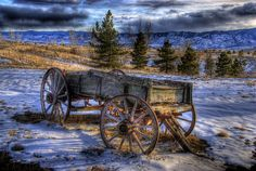 Historic Wagon, Chatfield Lake, Colorado