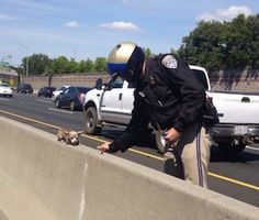 Praise poured in on Twitter over the weekend for police officers who rescued a Chihuahua from a busy interstate in California.