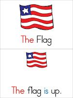 flag position on veterans day