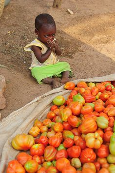 Market tomatos and child.