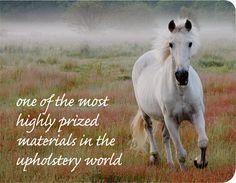renewable materials horsehair