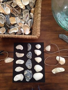 Making an easy souvenir with shells from our beach trip.