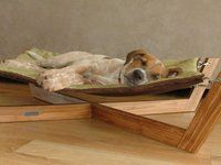 Dog Hammock- who wouldn't love this!?