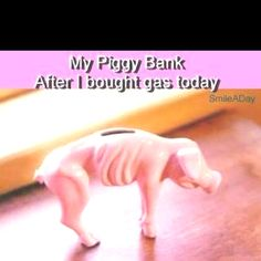 Haha so true... just filled up my beast and yup, no money in the bank anymore!!