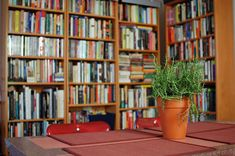 Another view -  modest house, library/dining combo....love it!