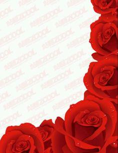 Petalos de rosas....