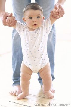 Love this for Noah's 6 month shoot