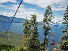 See Alaska the way the birds do. #zipline