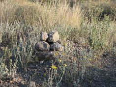 Baby pile of rocks. West Texas mountain.