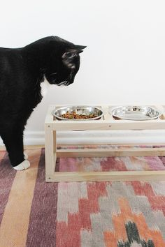 How-To: Modern Wooden Pet Bowl Stand #pets #DIY