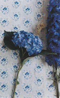 Blue hydrangea inspi