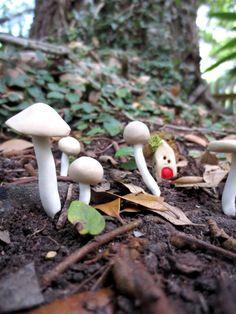 Mushroom Love...Natural Color Terrarium Mushroom Accessories Fairy Garden Mushroom Fairy Garden Accessory Miniature Mushrooms on Etsy, $9.00