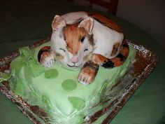 Novelty Cake Designs: How to make a Cat Cake