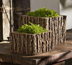 bark planters